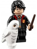 LEGO Série Harry Potter et les Animaux Fantastiques - Harry Potter in School Robe - 71022-01