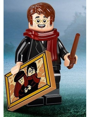 LEGO Série Harry Potter 2 -  - 71028-08
